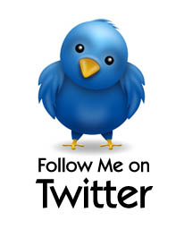 twitter-follow-me-button-20